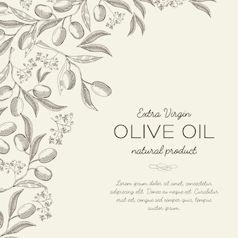 Abstraktes botanisches licht mit text und eleganten olivenbaumzweigen im gravurstil