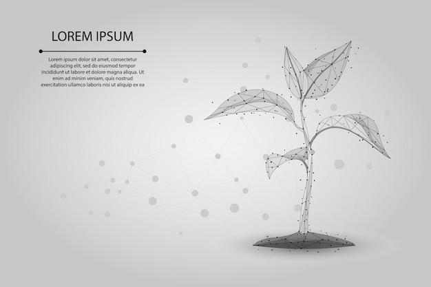 Abstraktes ökologisches abstraktes konzept der maischelinie und der punktpflanze keimen. rette planet und natur, umweltpolygon