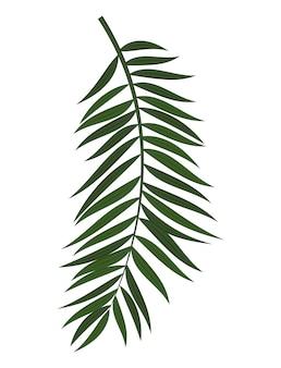 Abstraktes realistisches grünes palmblatt. gestaltungselement.