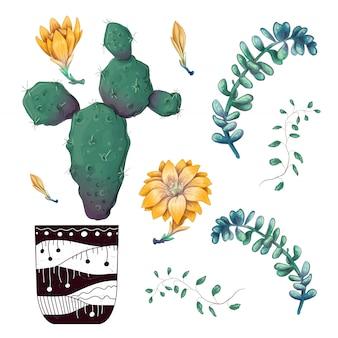 Abzeichen-sammlungssatz der topfkakteen und der sukkulentenpflanzen.