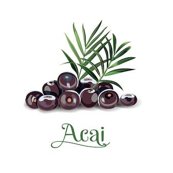 Acai-beeren für etiketten