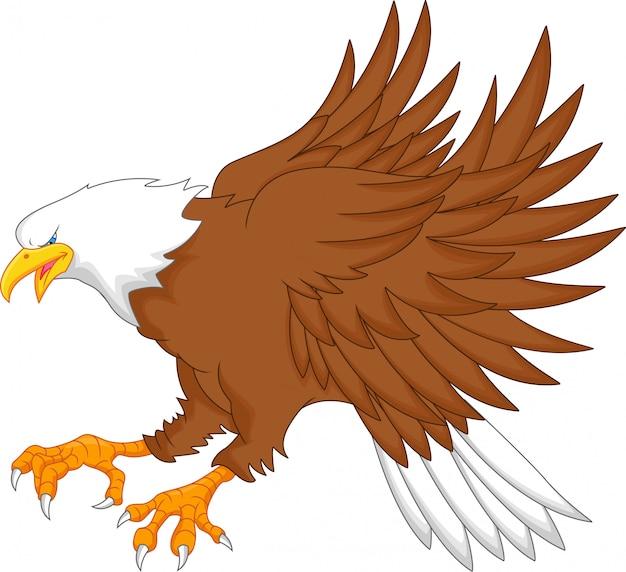 Adler-cartoon