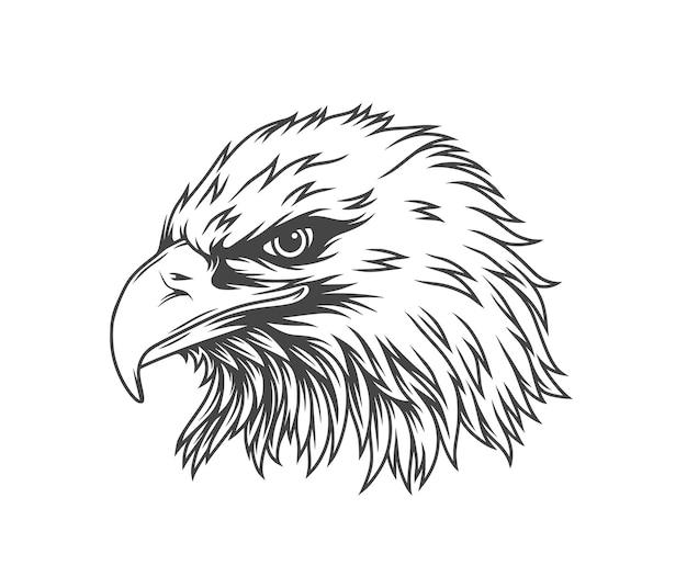 Adler linienkunst