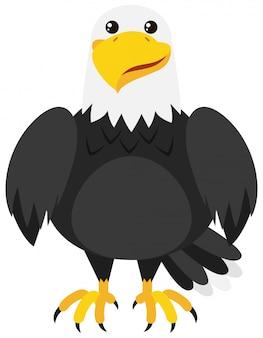 Adler mit glücklichem gesicht