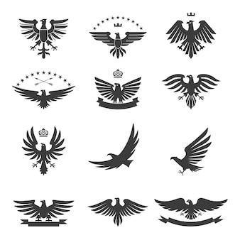 Adler set schwarz