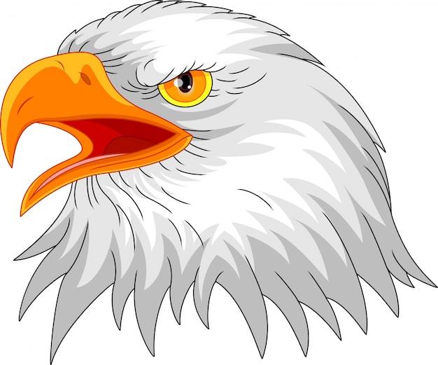 Adlerkopf maskottchen