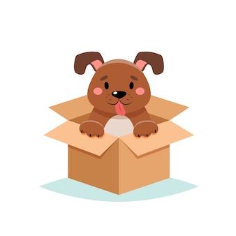 Adoptieren sie ein haustier - niedlichen hund in einer box, auf weißem hintergrund