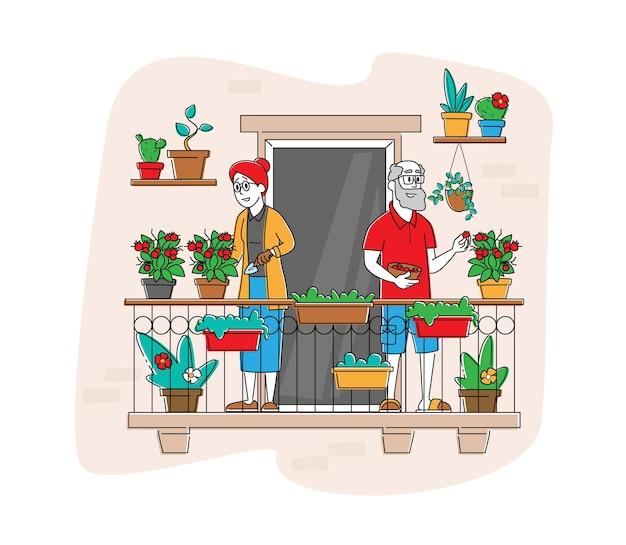 Ältere charaktere, die garten-hobby genießen arbeiten am balkon gartenpflege von pflanzen und bewässerung von grün und gemüse in töpfen.