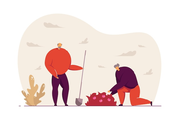 Älteres paar, das flache vektorillustration der gartenarbeit tut. alter mann mit schaufel, frau, die unkraut in der nähe von busch mit blumen entfernt. gärtner, ruhestandskonzept für banner, website-design oder landing-webseite