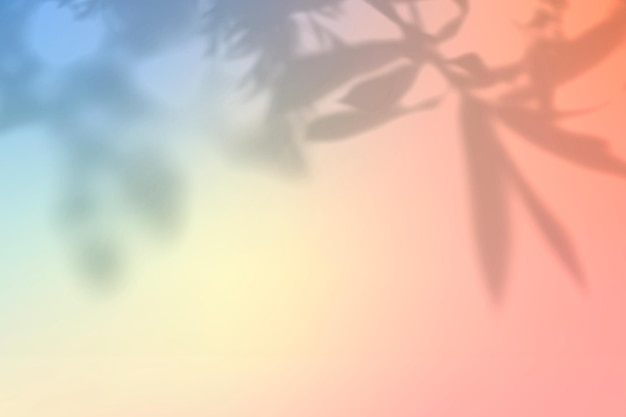 Ästhetischer hintergrundvektor des pfirsichschattens mit leerzeichen