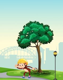 Affe, der rollschuh am park spielt