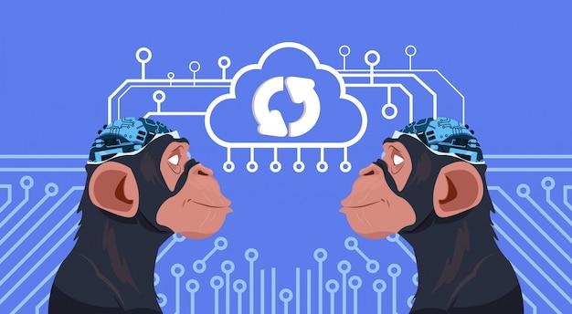 Affe geht mit cyborg-gehirn voran, das über stromkreis-hintergrund aktualisiert