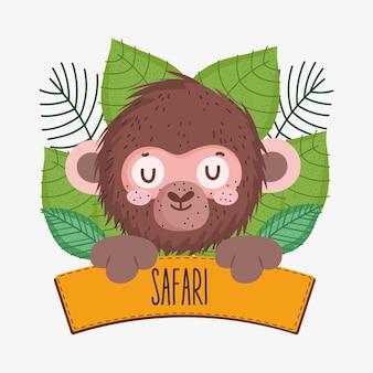Affe und safaribrett
