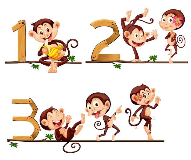 Affen und nummer eins bis drei
