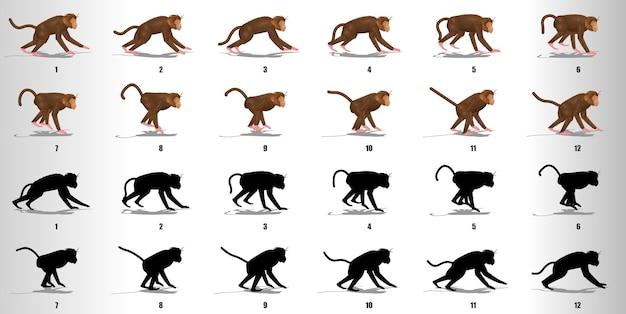 Affenlaufzyklus-animationssequenzvektor