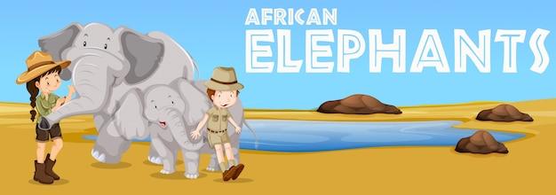 Afrikanische elefanten und menschen auf dem gebiet