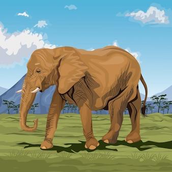 Afrikanische landschaft der bunten szene mit dem elefantgehen