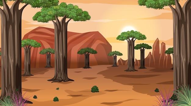 Afrikanische savannenwaldlandschaftsszene bei sonnenuntergang