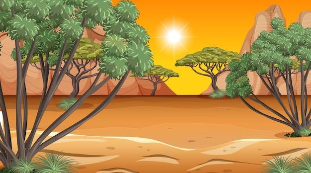 Afrikanische savannenwaldlandschaftsszene zur sonnenuntergangszeit