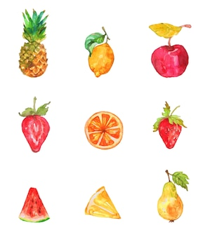 Aktuelles fruchtaquarell