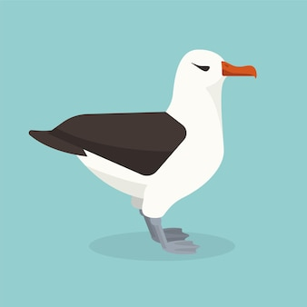 Albatrosvogel sitzt alleine.