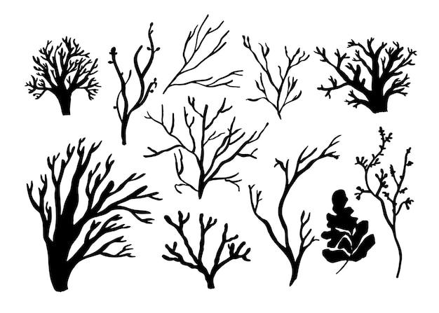 Algen-, korallen- und algenset. verschiedene silhouetten der unterwasserfauna. schwarze hand gezeichnete vektorillustration.