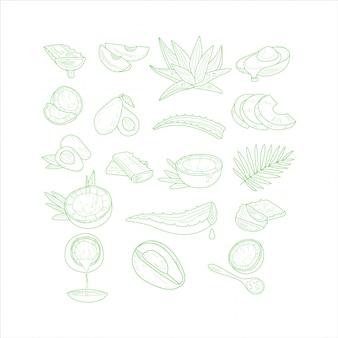 Aloe-, avocado- und kokosnuss-set