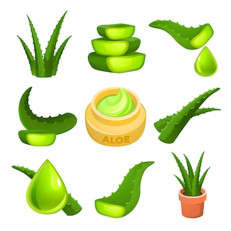 Aloe-set, cartoon-stil