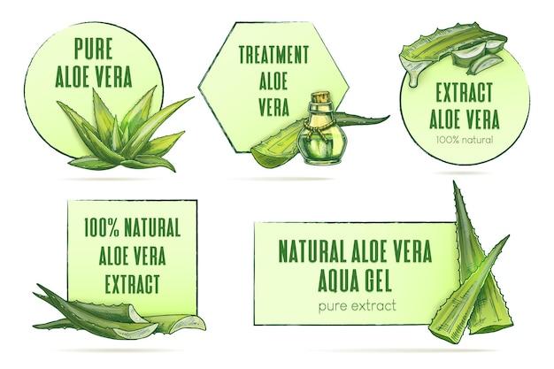 Aloe vera-etiketten setzen vektor-vintage-rahmen