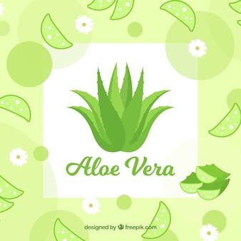 Aloe vera hintergrund mit blättern und blumen