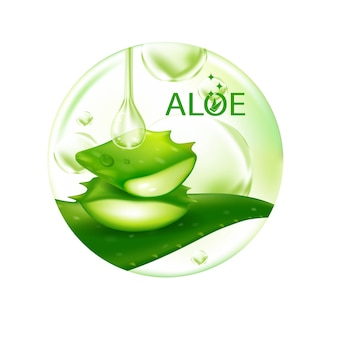 Aloe vera realistische pflanzenhautpflege kosmetik