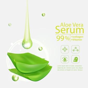 Aloe vera-vektor auf weißem hintergrund für kosmetische hautpflegeprodukte