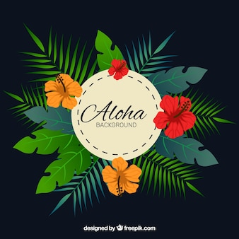Aloha hintergrund mit palmblättern