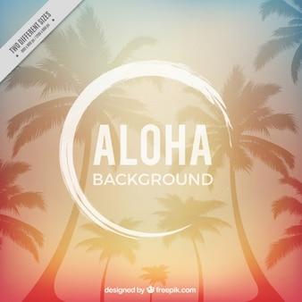 Aloha hintergrund, warme farben