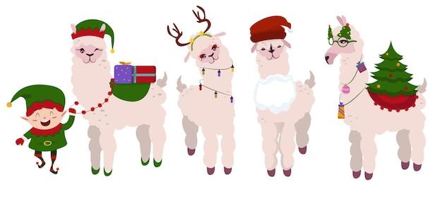 Alpaka charakter mit vielen weihnachtsdekorationen