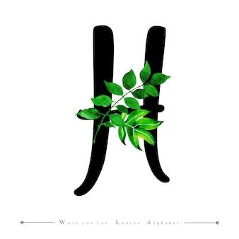 Alphabet buchstabe h mit aquarell verlässt hintergrund