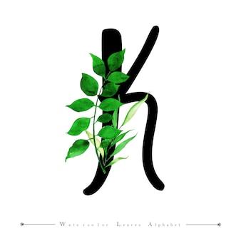 Alphabet buchstabe k mit aquarell verlässt hintergrund