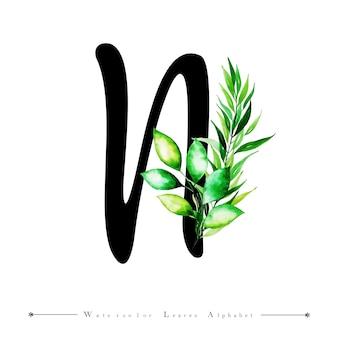 Alphabet-buchstabe n mit aquarell verlässt hintergrund
