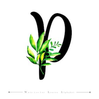 Alphabet-buchstabe p mit aquarell verlässt hintergrund