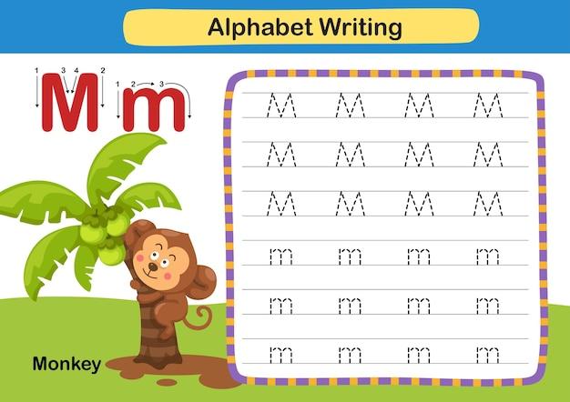 Alphabet buchstabe übung m affe mit karikaturvokabularillustration