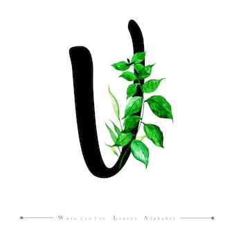 Alphabet-buchstabe v mit aquarell verlässt hintergrund