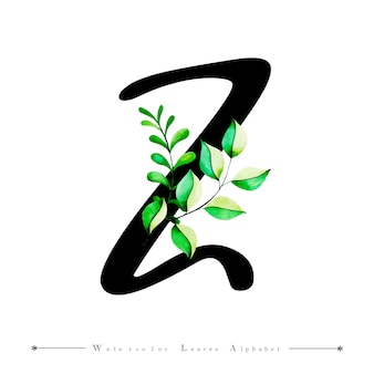 Alphabet-buchstabe z mit aquarell verlässt hintergrund