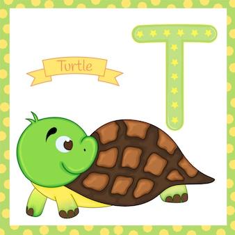 Alphabet der tiere. t für schildkröte.