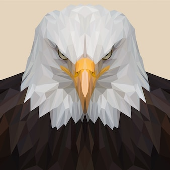 Amerikanischer adler lowpoly illustration