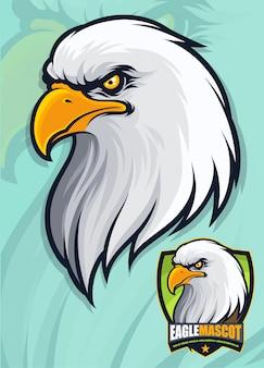 Amerikanischer weißkopfseeadlerkopf für maskottchen- und logo-design