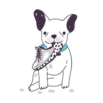 Amüsanter hund sitzt und kaut oder nagt schuh