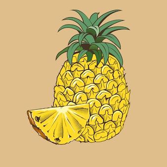 Ananas im vintage-stil. farbige vektorabbildung