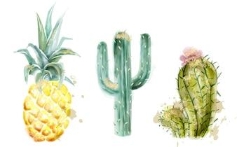 Ananas und Kaktus Aquarell gesetzt