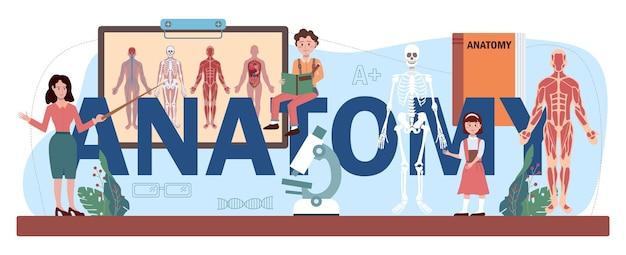 Anatomie typografischer header. studium der inneren menschlichen organe. schulfach anatomie und biologie. menschliche körpersysteme. isolierte flache vektorillustration
