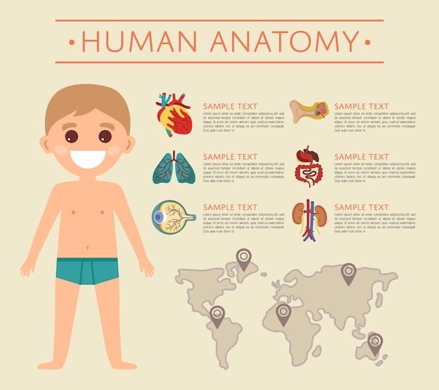 Anatomieschablone des menschlichen körpers mit lächelndem kind